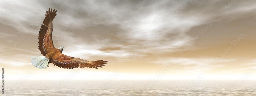 Fototapety, obrazy: Bald eagle flying - 3D render