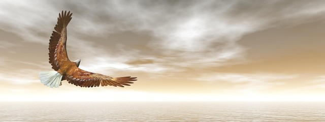 Fototapeta na wymiar Bald eagle flying - 3D render