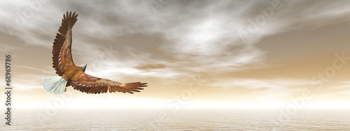 Fotografering  Bald eagle flying - 3D render