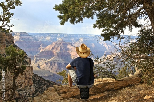 Poster de jardin Vache Grand Canyon