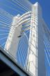 Suspension bridge pylons in Bucharest