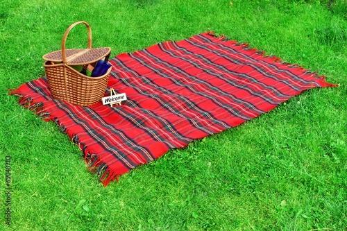 Stickers pour porte Pique-nique Picnic blanket and basket on the lawn