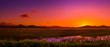 canvas print picture - Sunset-australian outback
