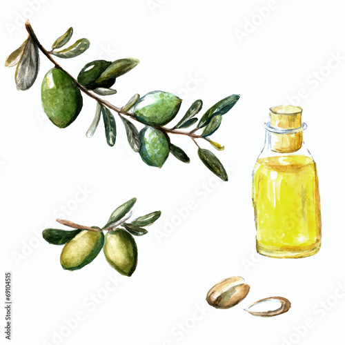 Photo Watercolor vector illustration of argan brunch, fruits, nuts and