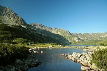 Fototapeta Small pond in the Valley of five ponds in the Polish Tatras