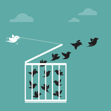 Vector Of Bird In The Cage And Outside The Cage. Freedom. Animals.