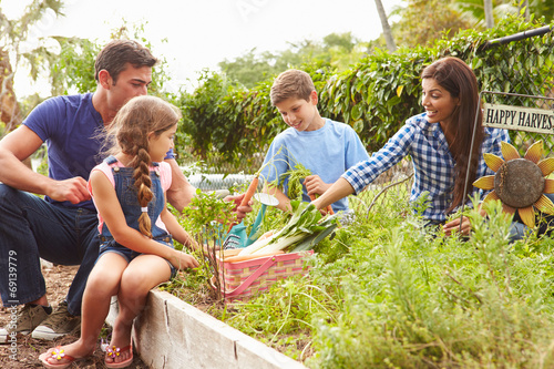 Photo Family Working On Allotment Together