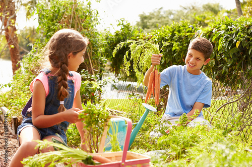 Photo Two Children Working On Allotment Together