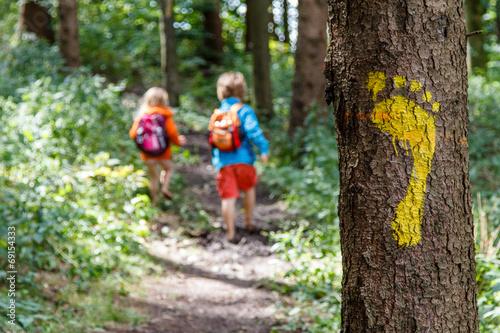 Photo Stands Road in forest Barfuß auf dem Waldweg