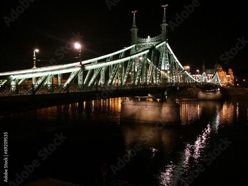 Fotografie, Obraz  Ponte sul Danubio