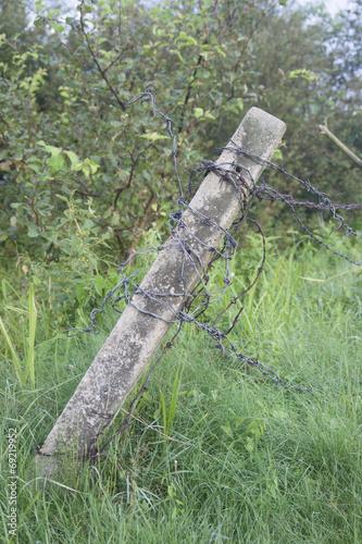 Fotografia, Obraz  Słupek z drutem kolczastym