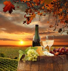 Fototapeta Toskania White wine with barell in vineyard, Chianti, Tuscany, Italy