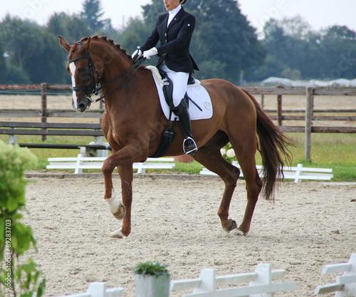 Fotobehang Paardrijden Pferdesport Kür Turnier Dressur
