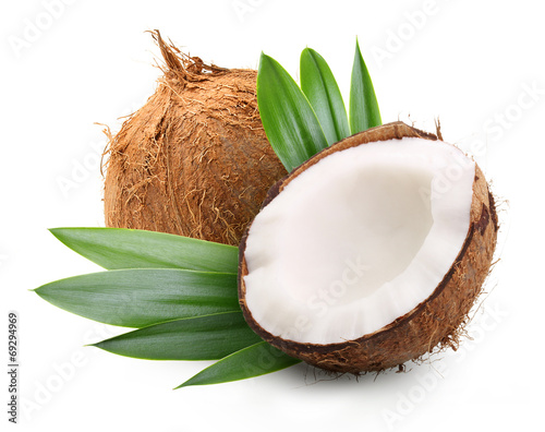 Coconut with palm leaves Fototapeta