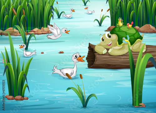Poster Turquoise Animals and pond