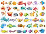 Fototapeta Fototapety na ścianę do pokoju dziecięcego - Fish collection