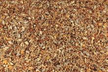 Mixed Bird Seed Close Up
