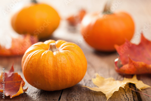 Fotografie, Obraz  autumn halloween pumpkins on wooden background