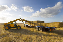 Tractor Loading Straw Bales On...