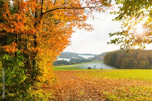 Poster Oranje eclat sonnige Herbstlandschaft