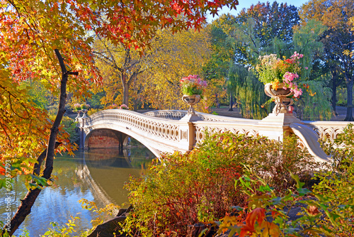 Autumn Colors - fall foliage in Central Park, Manhattan,New York Fototapeta
