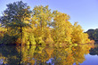 Autumn colors - fall foliage reflection in lake
