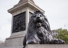 Lion Statue, Trafalgar Square