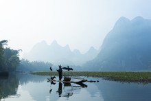 Cormorant, Fish Man And Li River Scenery Sight With Fog In Sprin