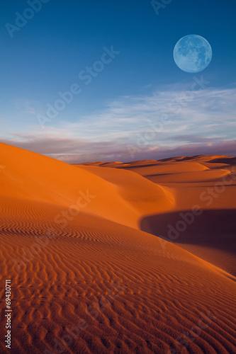 Poster de jardin Desert de sable moon on desert