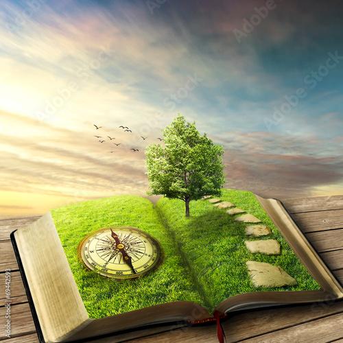 Book of life concept, dreamland Fototapet
