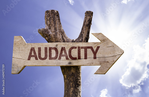 Audacity wooden sign with a street background Wallpaper Mural