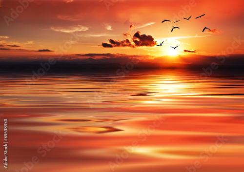 Spoed Fotobehang Oranje eclat cuando el mar se pinta de rojo