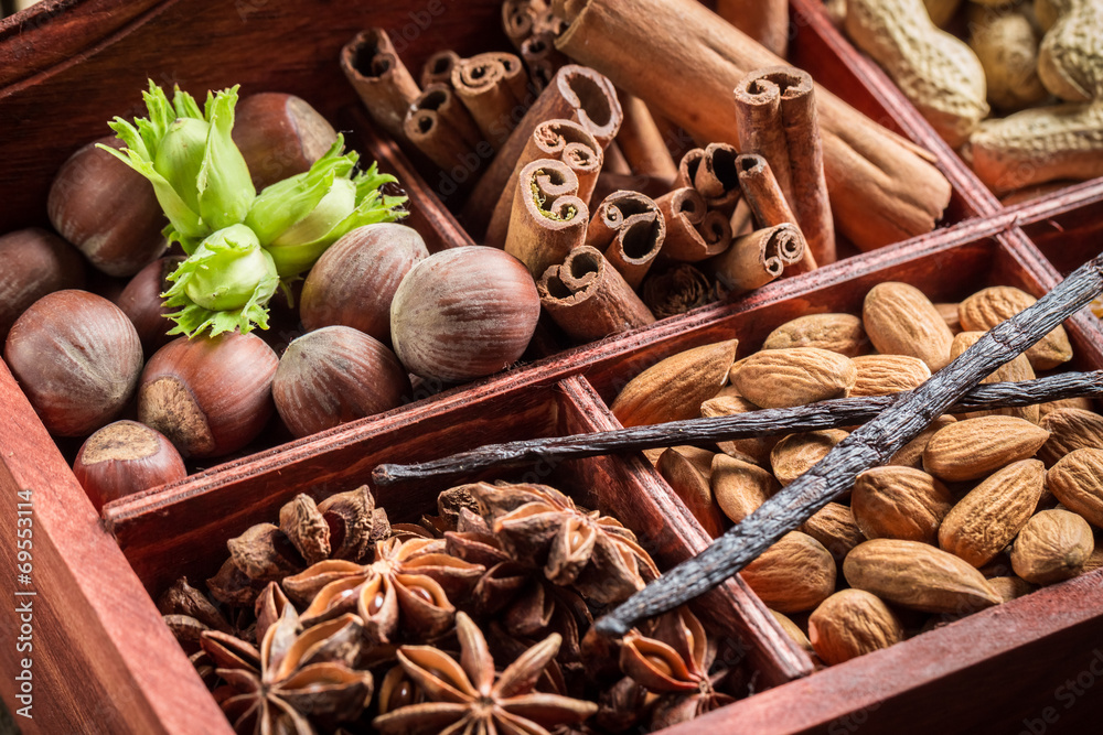 Fototapety, obrazy: Closeup of ingredients and nuts for chocolate