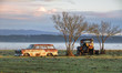 Vintage automobiles on a misty morning outback Australia