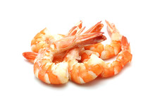 Shrimp Isolated On White Backg...