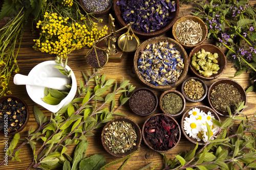 Photo  Natural medicine, herbs, mortar