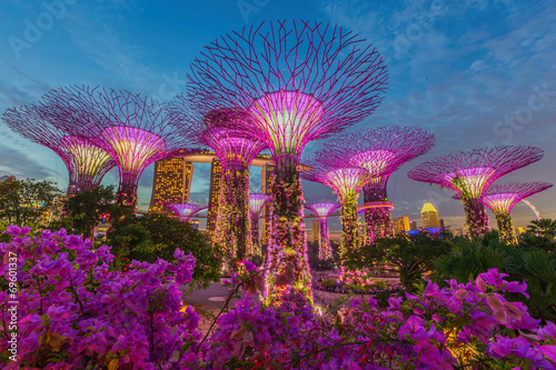 Fotobehang Singapore Night view of The Supertree Grove at Gardens by the Bay