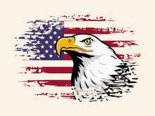 American Eagle Against USA Flag Background