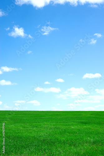 Tuinposter Groene Landscape with green field and blue sky