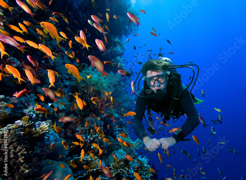 Photo Diver swims through tropical fish on coral reef