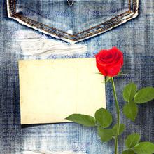 Old Vintage Postcard With Beautiful Red Rose On Blue Jeans Backg