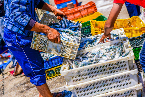 Canvas Print Fishermen arranging containers with fish