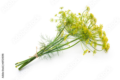 Fotografie, Tablou Dill isolated on white