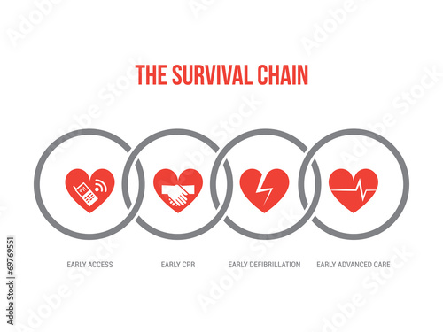 Fotografie, Obraz The survival chain
