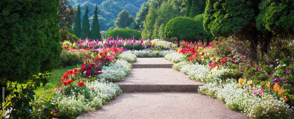 Fototapety, obrazy: Flower Garden
