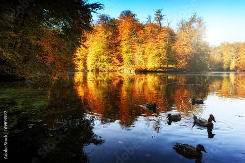 Autumn landscape with forest lake