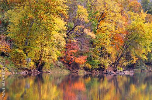Foto op Canvas Bomen Reflections of Autumn trees