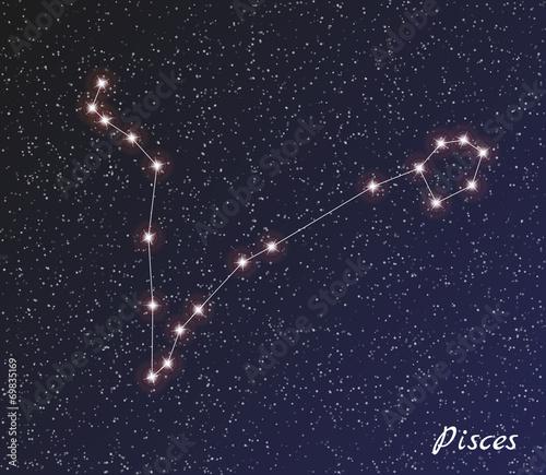 constellation pisces Fototapet