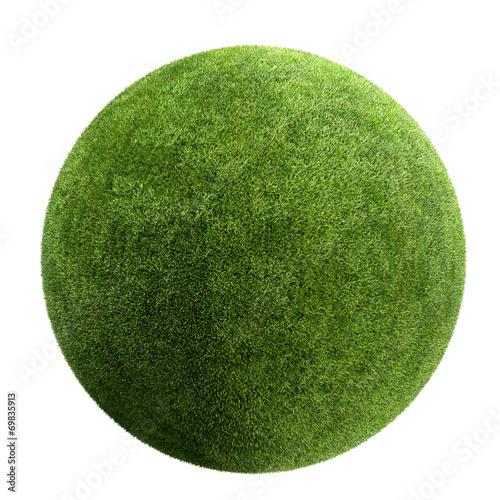 Obraz grass ball - fototapety do salonu