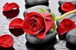 Czerwona róża na kamieniu bazaltowym